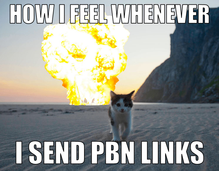 what it feels when sending pbn links meme